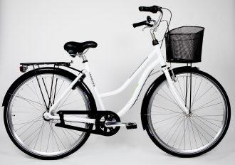 Egen modell som vi kallar Älvängens cykel