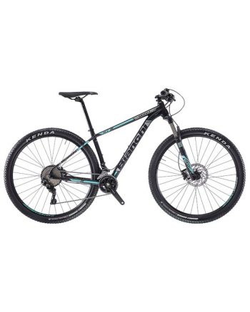Bianchi Grizzly 29.2
